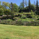 Foto plantsoen met grasveld.